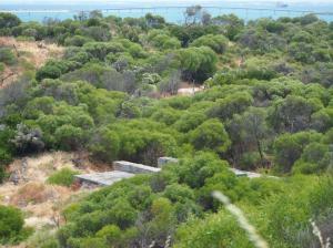 Control room bunker hidden in dunes