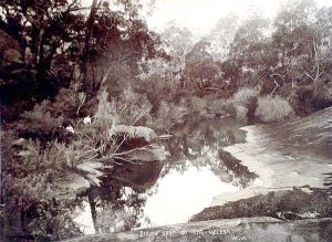 Beautie Spot on the Helena River circa 1900 WA0169