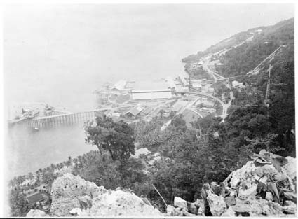 Flying Fish Cove in 1929 from the clifftop