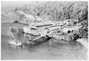 Flying Fish Cove, Christmas Island, 1945