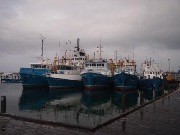 Kailis Fishing Fleet in Fremantle Fishing Boat Harbour
