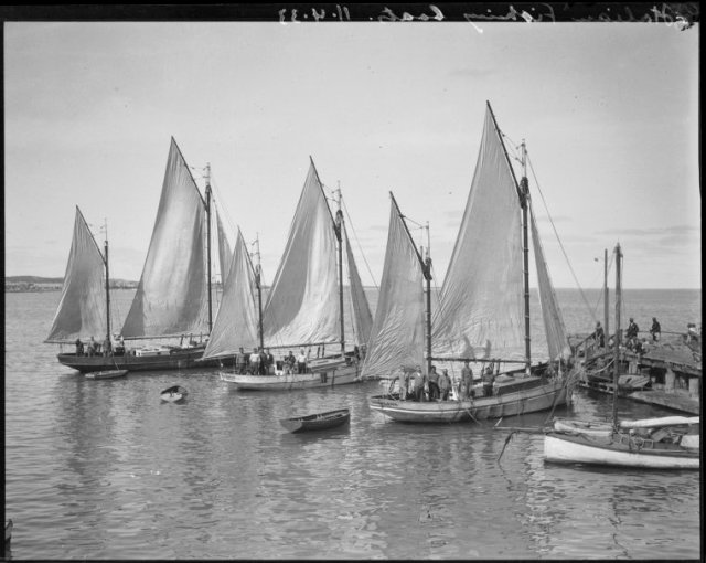 Fremantle Fishing Boats - Italian slwa_b2215645_1