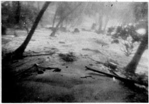 Waves breaking in the Settlement