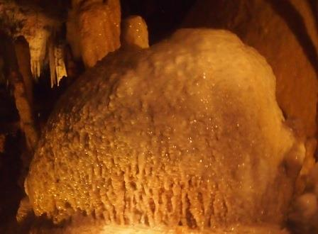 Lake Cave Cave Coral