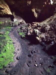 Mammoth Cave dry creek