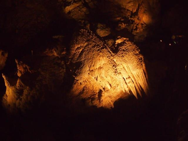 Mammoth in Mammoth Cave